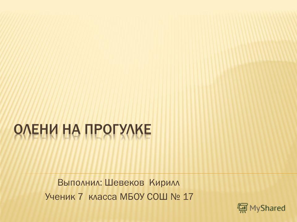 Выполнил: Шевеков Кирилл Ученик 7 класса МБОУ СОШ 17