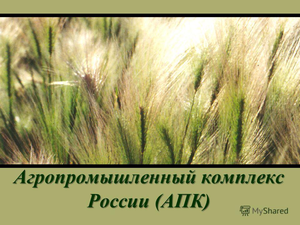Агропромышленныйкомплекс России (АПК) Агропромышленный комплекс России (АПК)