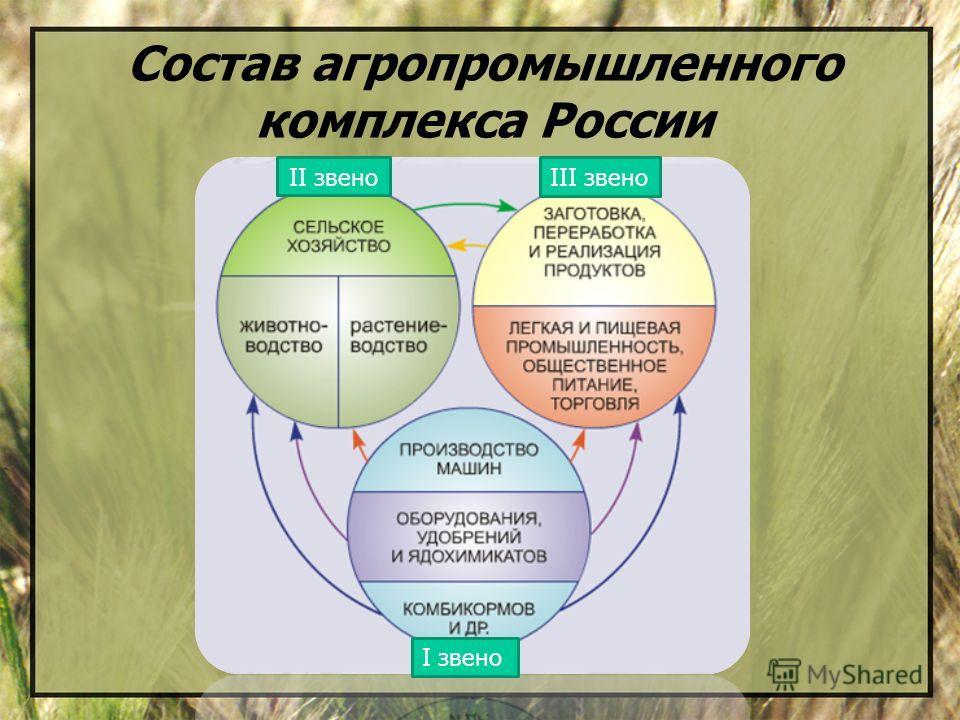 Состав агропромышленного комплекса России I звено III звено II звено