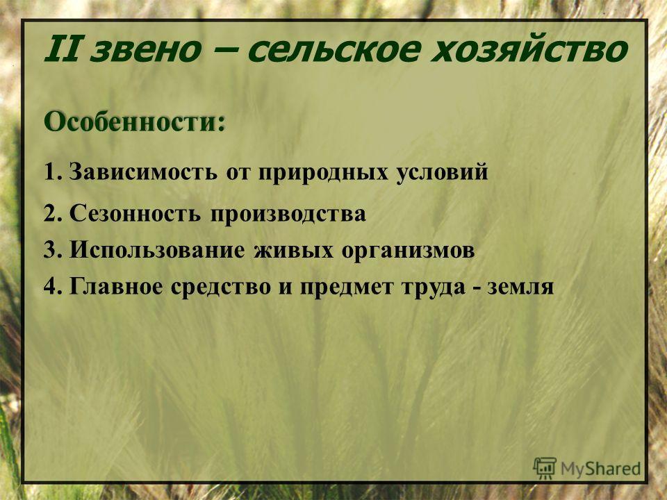 II звено – сельское хозяйство Особенности: 1. Зависимость от природных условий 2. Сезонность производства 3. Использование живых организмов 4. Главное средство и предмет труда - земля