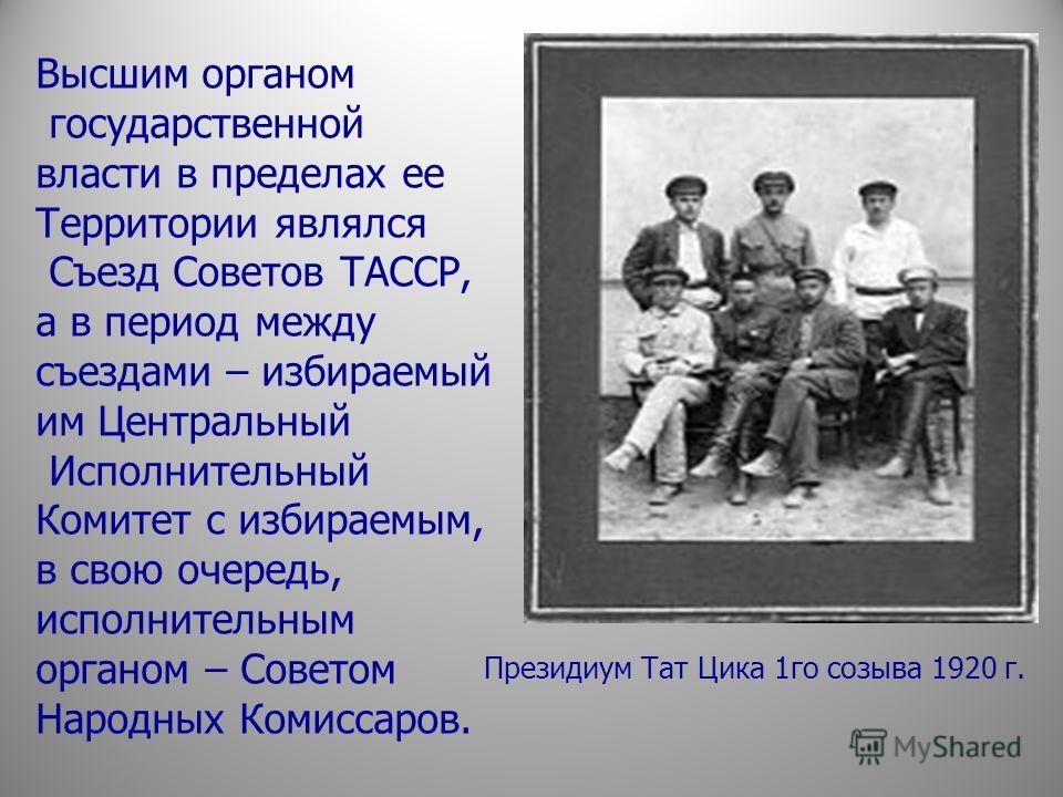 Высшим органом государственной власти в пределах ее Территории являлся Съезд Советов ТАССР, а в период между съездами – избираемый им Центральный Исполнительный Комитет с избираемым, в свою очередь, исполнительным органом – Советом Народных Комиссаро
