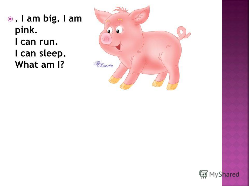 . I am big. I am pink. I can run. I can sleep. What am I?
