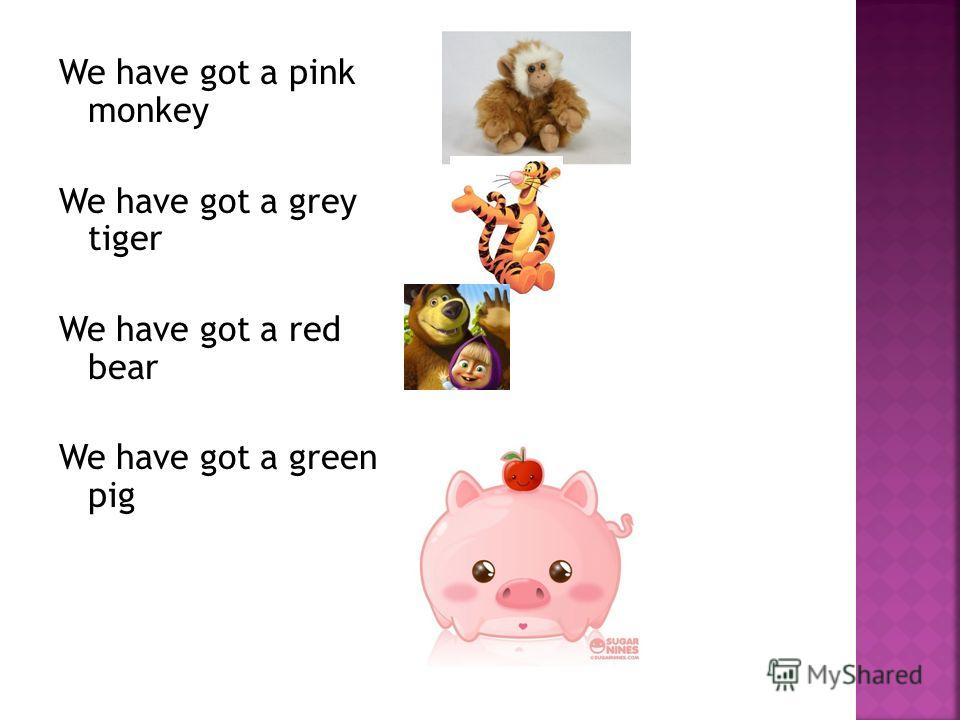 We have got a pink monkey We have got a grey tiger We have got a red bear We have got a green pig