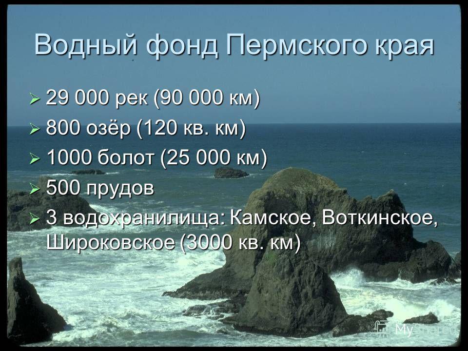 Водный фонд Пермского края 29 000 рек (90 000 км) 29 000 рек (90 000 км) 800 озёр (120 кв. км) 800 озёр (120 кв. км) 1000 болот (25 000 км) 1000 болот (25 000 км) 500 прудов 500 прудов 3 водохранилища: Камское, Воткинское, Широковское (3000 кв. км) 3
