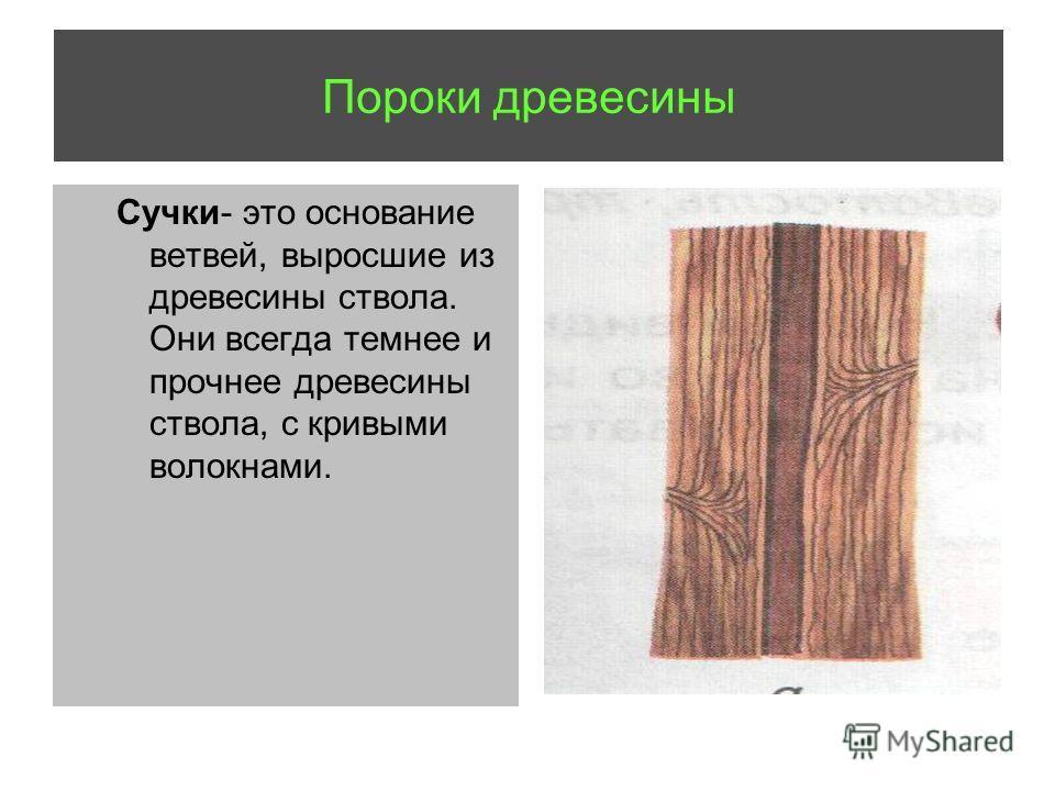 Сучки- это основание ветвей, выросшие из древесины ствола. Они всегда темнее и прочнее древесины ствола, с кривыми волокнами.