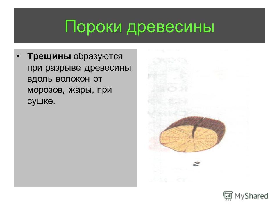 Трещины образуются при разрыве древесины вдоль волокон от морозов, жары, при сушке. Пороки древесины