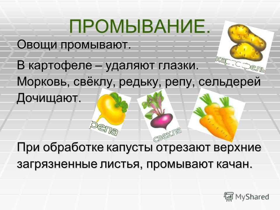 МОЙКА И ЧИСТКА. Овощи моют и чистят. В общественном питании для чистки овощей используют специальные машины – овощечистки.