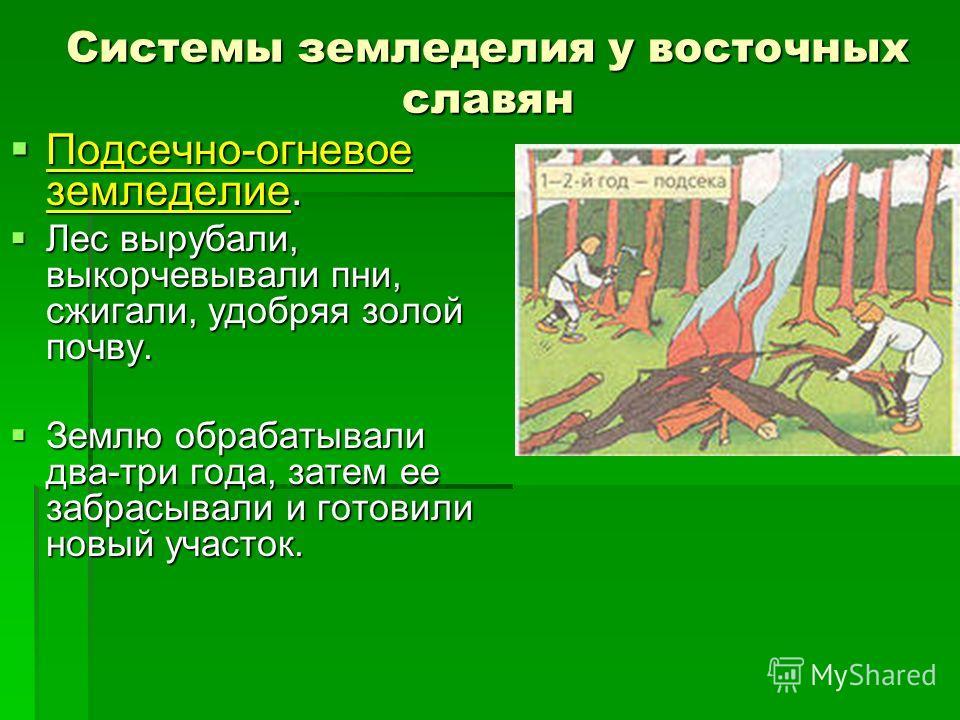 Системы земледелия у восточных славян Подсечно-огневое земледелие. Подсечно-огневое земледелие. Лес вырубали, выкорчевывали пни, сжигали, удобряя золой почву. Лес вырубали, выкорчевывали пни, сжигали, удобряя золой почву. Землю обрабатывали два-три г