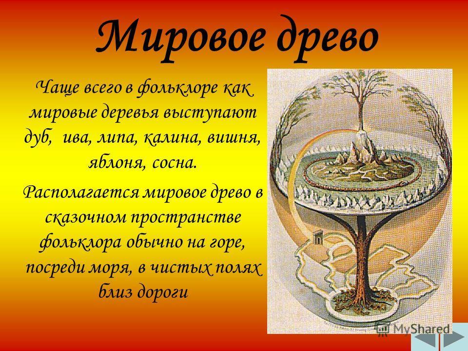 Мировое древо Чаще всего в фольклоре как мировые деревья выступают дуб, ива, липа, калина, вишня, яблоня, сосна. Располагается мировое древо в сказочном пространстве фольклора обычно на горе, посреди моря, в чистых полях близ дороги