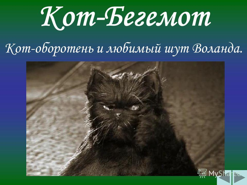 Кот-Бегемот Кот-оборотень и любимый шут Воланда.