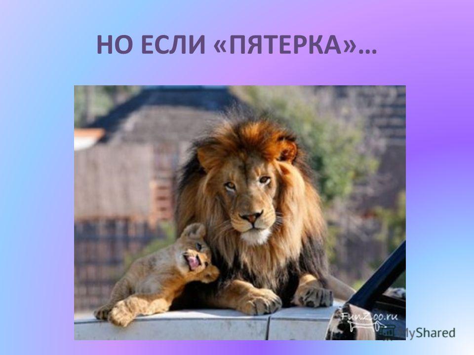 НО ЕСЛИ «ПЯТЕРКА»…