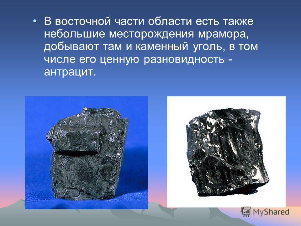 В восточной части области есть также небольшие месторождения мрамора, добывают там и каменный уголь, в том числе его ценную разновидность - антрацит.