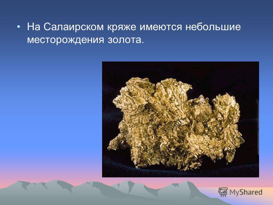 На Салаирском кряже имеются небольшие месторождения золота.