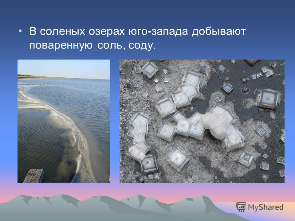 В соленых озерах юго-запада добывают поваренную соль, соду.