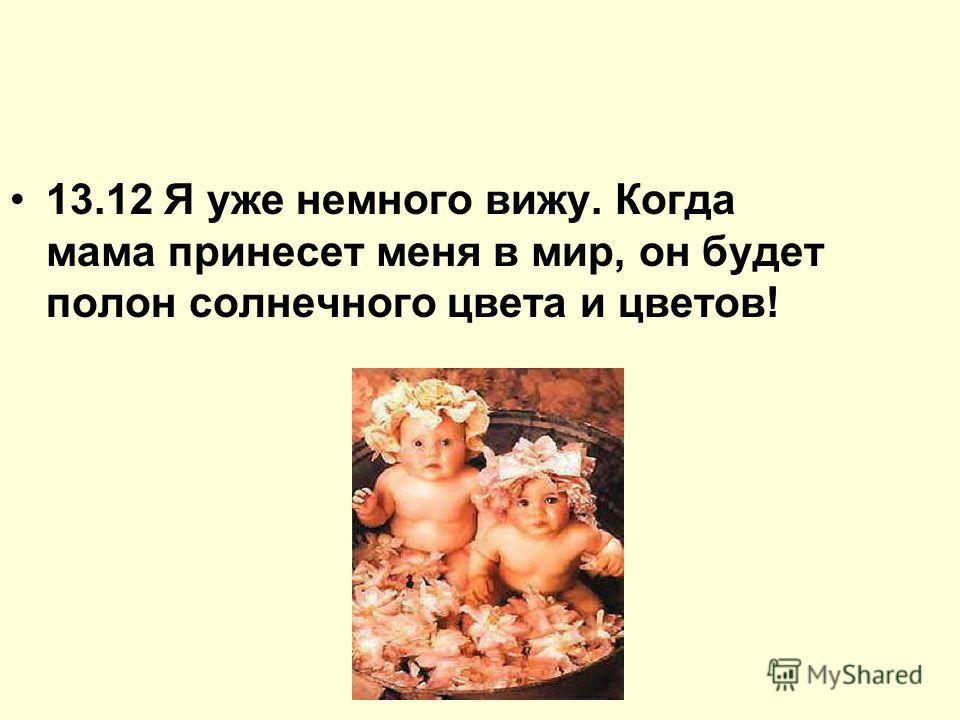 13.12 Я уже немного вижу. Когда мама принесет меня в мир, он будет полон солнечного цвета и цветов!