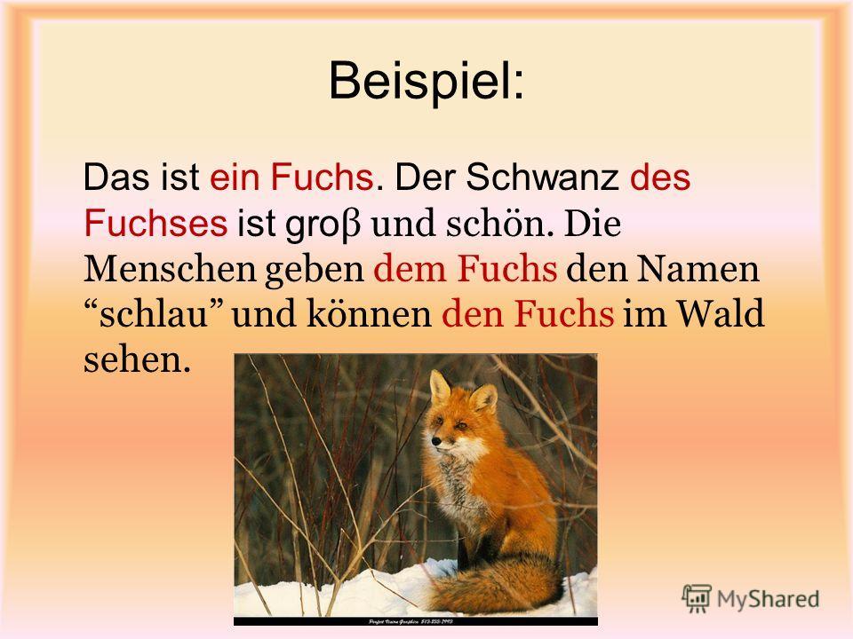 Beispiel: Das ist ein Fuchs. Der Schwanz des Fuchses ist gro β und schön. Die Menschen geben dem Fuchs den Namen schlau und können den Fuchs im Wald sehen.