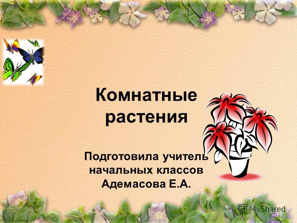 Комнатные растения Подготовила учитель начальных классов Адемасова Е.А.