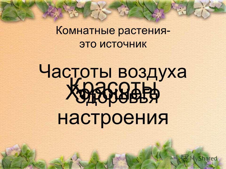 Комнатные растения- это источник Красоты Хорошего настроения Частоты воздуха Здоровья