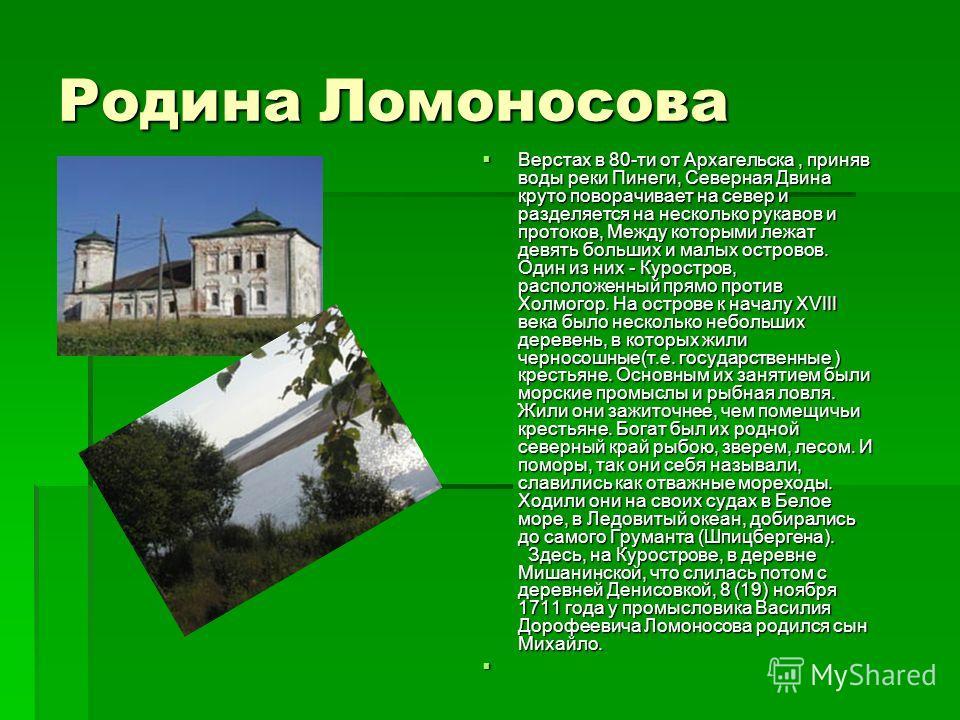 Родина Ломоносова Верстах в 80-ти от Архагельска, приняв воды реки Пинеги, Северная Двина круто поворачивает на север и разделяется на несколько рукавов и протоков, Между которыми лежат девять больших и малых островов. Один из них - Куростров, распол