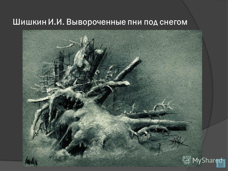 Шишкин И.И. Вывороченные пни под снегом