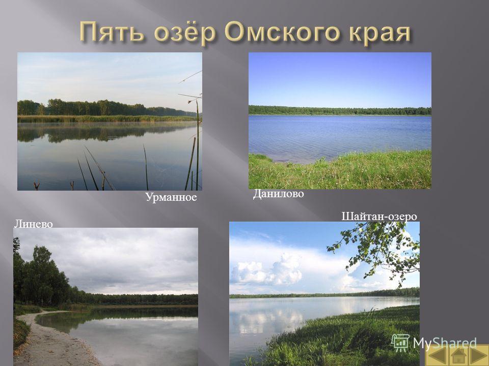Данилово Линево Урманное Шайтан-озеро