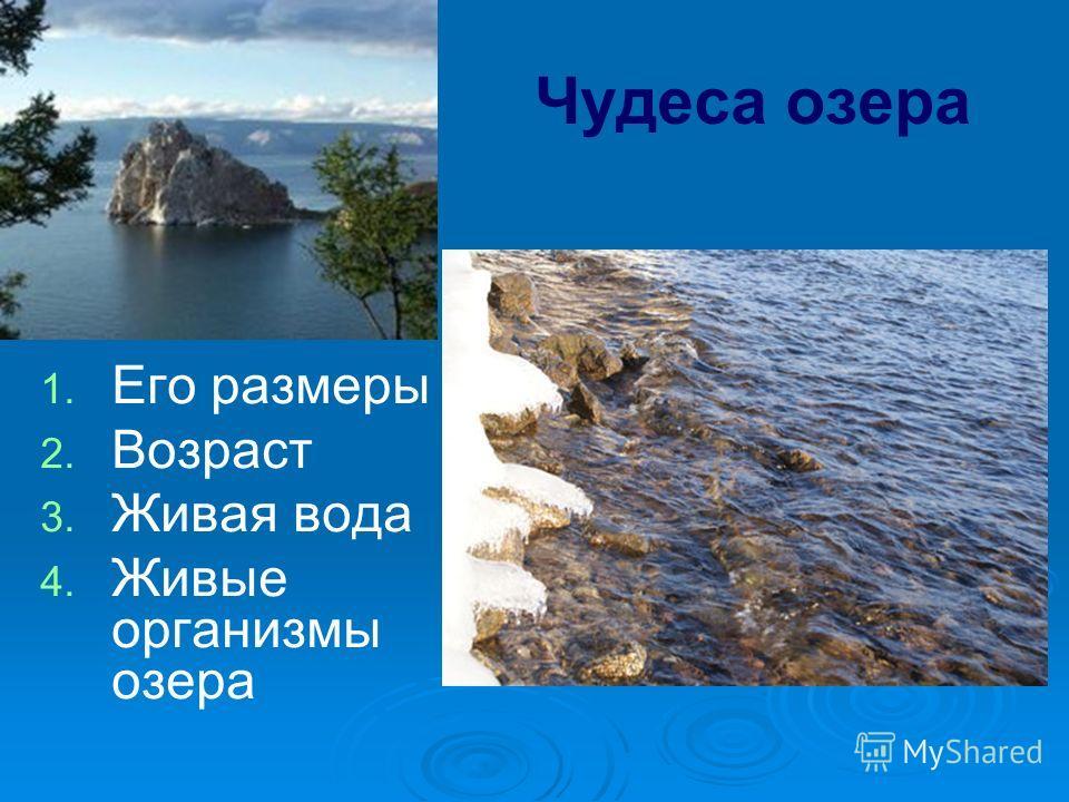 Чудеса озера 1. 1. Его размеры 2. 2. Возраст 3. 3. Живая вода 4. 4. Живые организмы озера