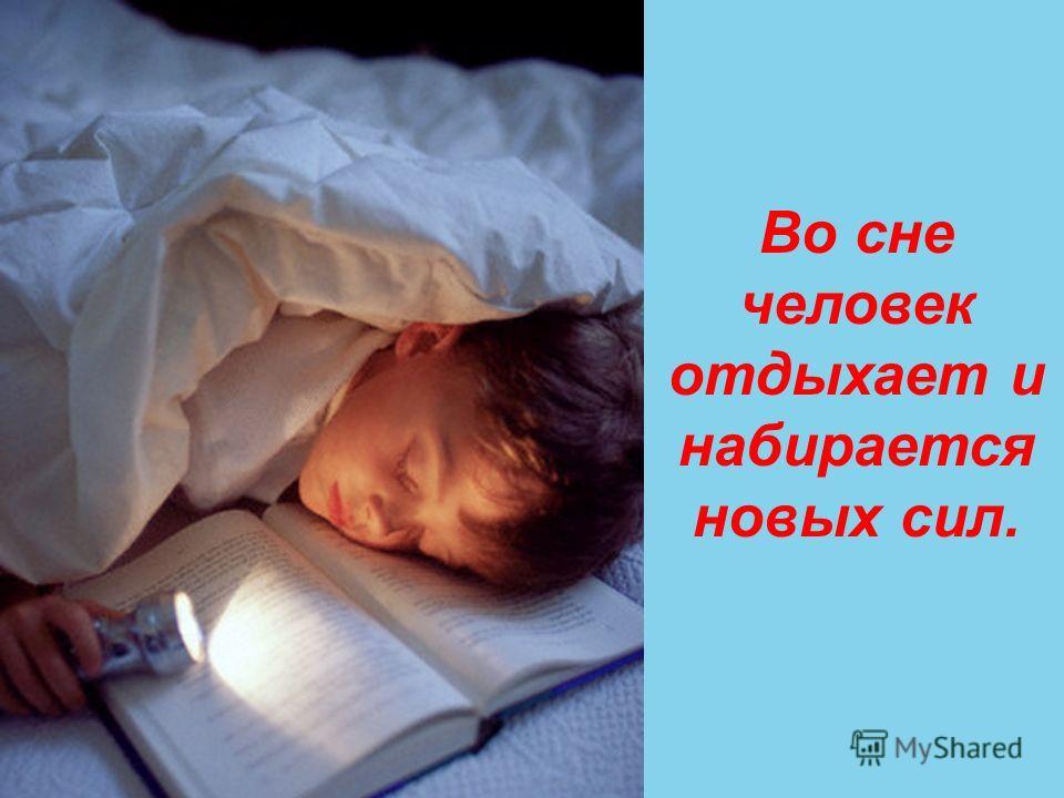 Во сне человек отдыхает и набирается новых сил.