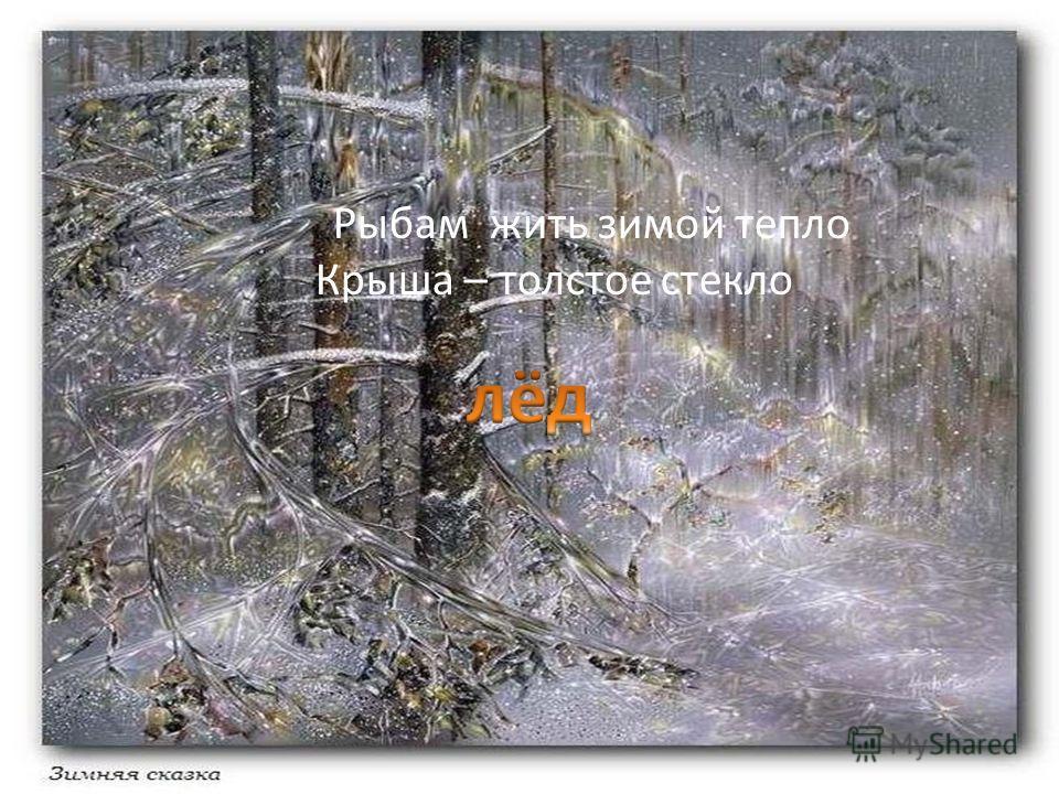 . Рыбам жить зимой тепло Крыша – толстое стекло