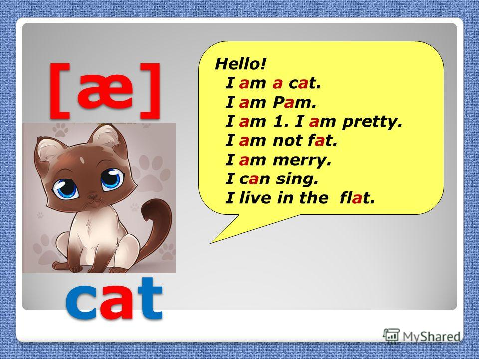 [æ] cat [æ] cat Hello! I am a cat. I am Pam. I am 1. I am pretty. I am not fat. I am merry. I can sing. I live in the flat.