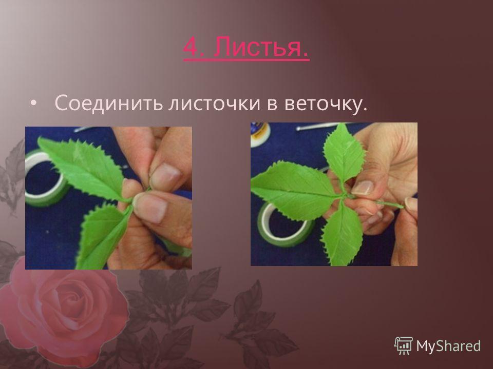 4. Листья. Соединить листочки в веточку.