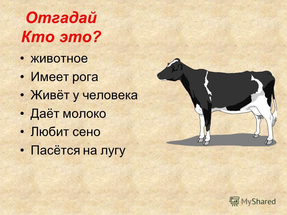 животное Имеет рога Живёт у человека Даёт молоко Любит сено Пасётся на лугу Отгадай Кто это?