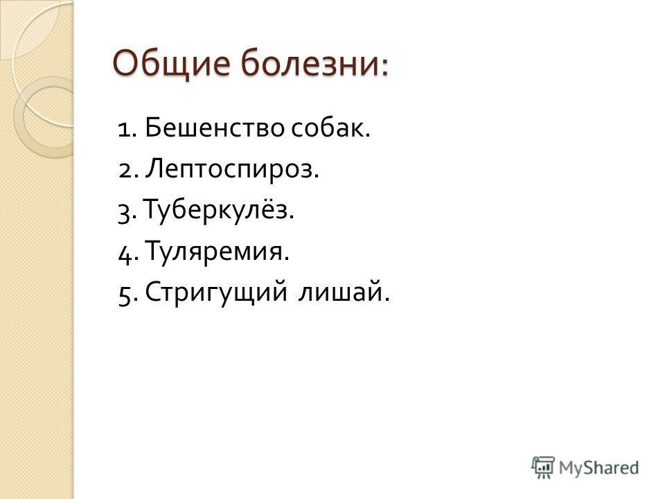 Общие болезни : 1. Бешенство собак. 2. Лептоспироз. 3. Туберкулёз. 4. Туляремия. 5. Стригущий лишай.