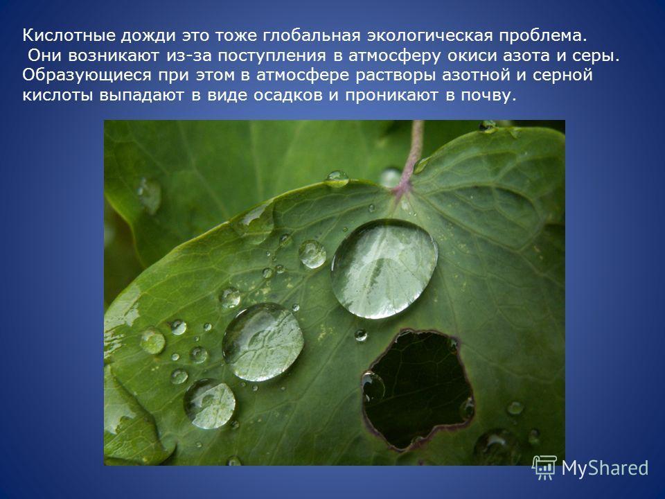 Кислотные дожди это тоже глобальная экологическая проблема. Они возникают из-за поступления в атмосферу окиси азота и серы. Образующиеся при этом в атмосфере растворы азотной и серной кислоты выпадают в виде осадков и проникают в почву.