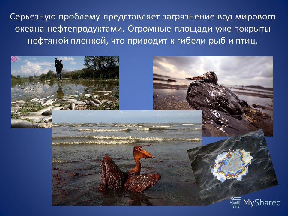 Серьезную проблему представляет загрязнение вод мирового океана нефтепродуктами. Огромные площади уже покрыты нефтяной пленкой, что приводит к гибели рыб и птиц.