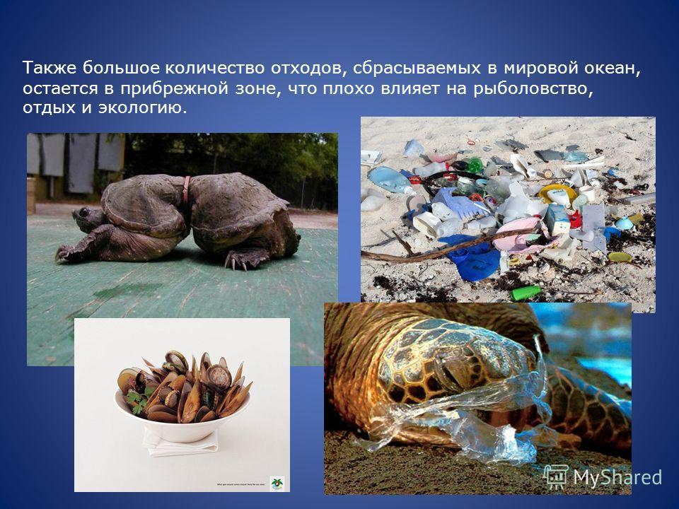 Также большое количество отходов, сбрасываемых в мировой океан, остается в прибрежной зоне, что плохо влияет на рыболовство, отдых и экологию.