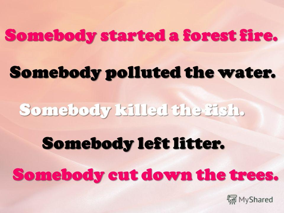 Somebody started a forest fire. Somebody polluted the water. Somebody killed the fish. Somebody left litter. Somebody cut down the trees.