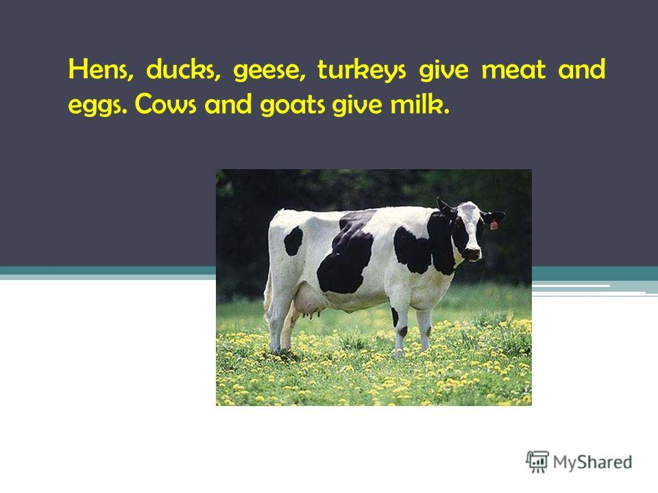 Hens, ducks, geese, turkeys give meat and eggs. Cows and goats give milk.