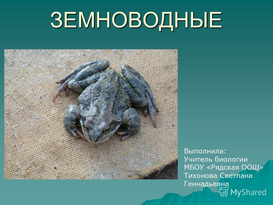 ЗЕМНОВОДНЫЕ Выполнила: Учитель биологии МБОУ «Рядская ООШ» Тихонова Светлана Геннадьевна