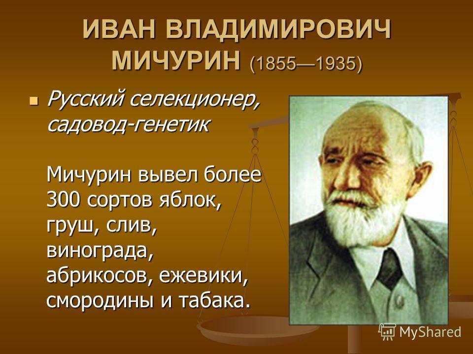 ИВАН ВЛАДИМИРОВИЧ МИЧУРИН (18551935) Русский селекционер, садовод-генетик Мичурин вывел более 300 сортов яблок, груш, слив, винограда, абрикосов, ежевики, смородины и табака. Русский селекционер, садовод-генетик Мичурин вывел более 300 сортов яблок,