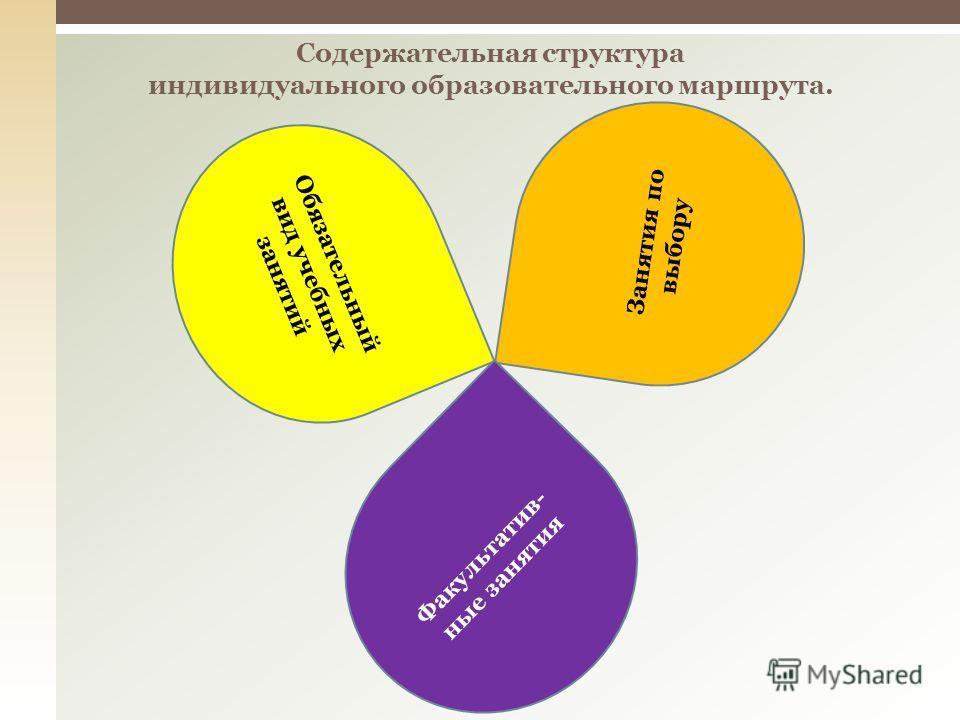 Содержательная структура индивидуального образовательного маршрута. Обязательный вид учебных занятий Занятия по выбору Факультатив- ные занятия