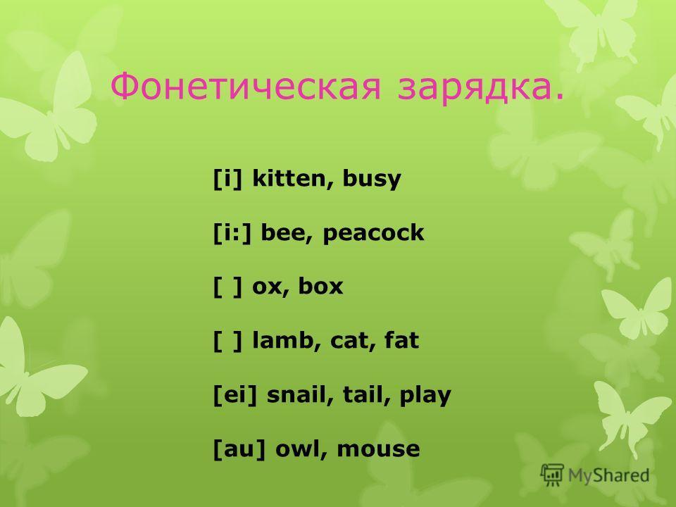 Фонетическая зарядка. [i] kitten, busy [i:] bee, peacock [ ] ox, box [ ] lamb, cat, fat [ei] snail, tail, play [au] owl, mouse