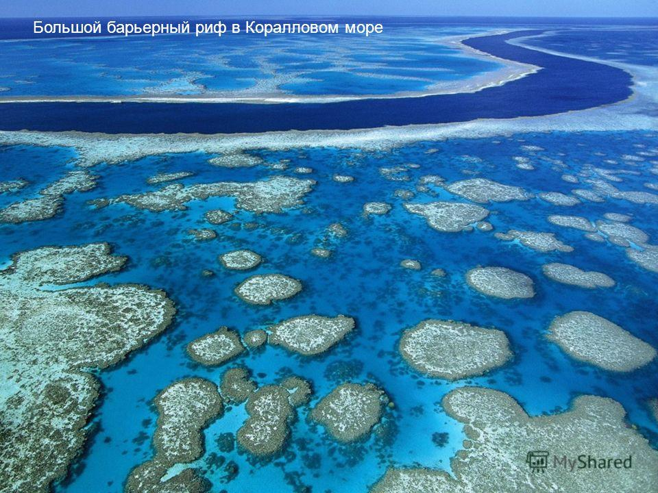 Большой барьерный риф в Коралловом море