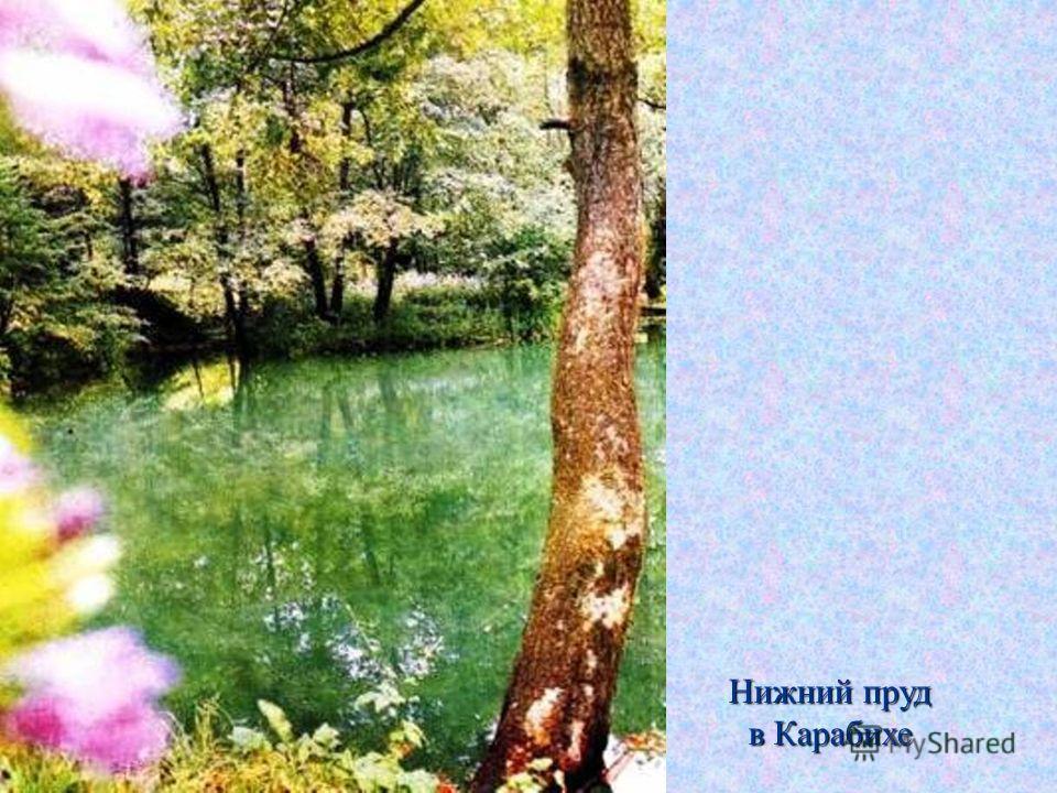Нижний пруд в Карабихе