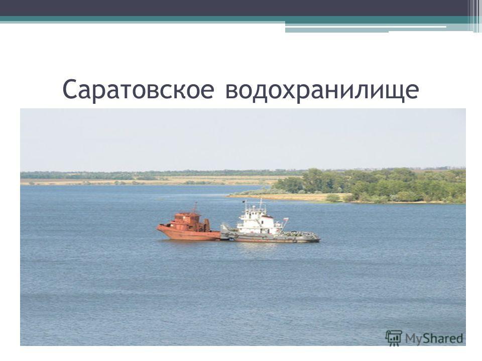 Саратовское водохранилище