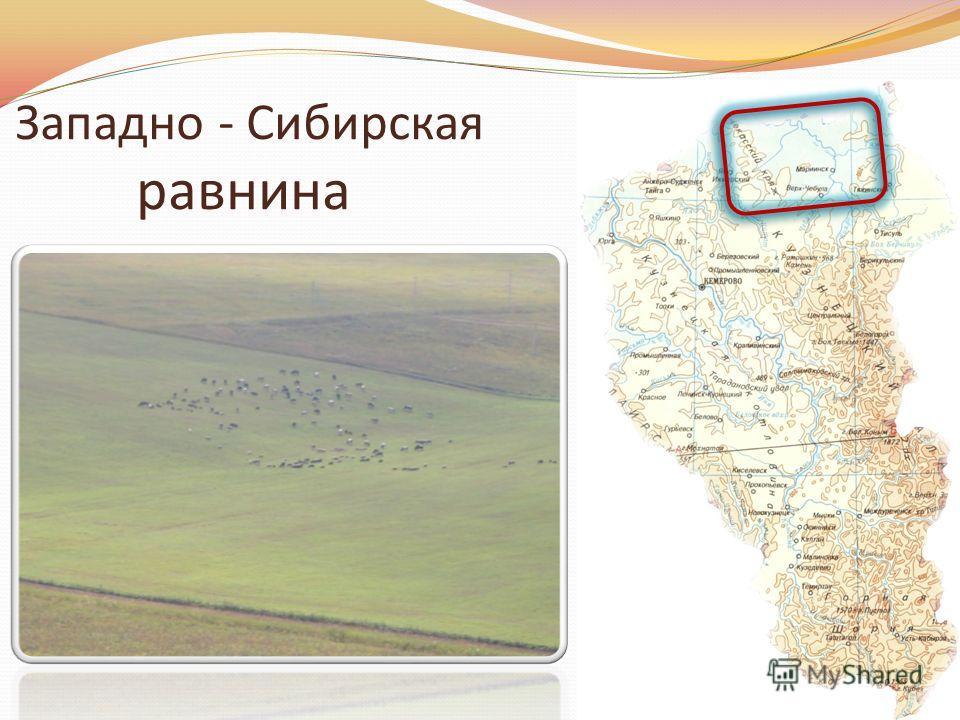 Западно - Сибирская равнина