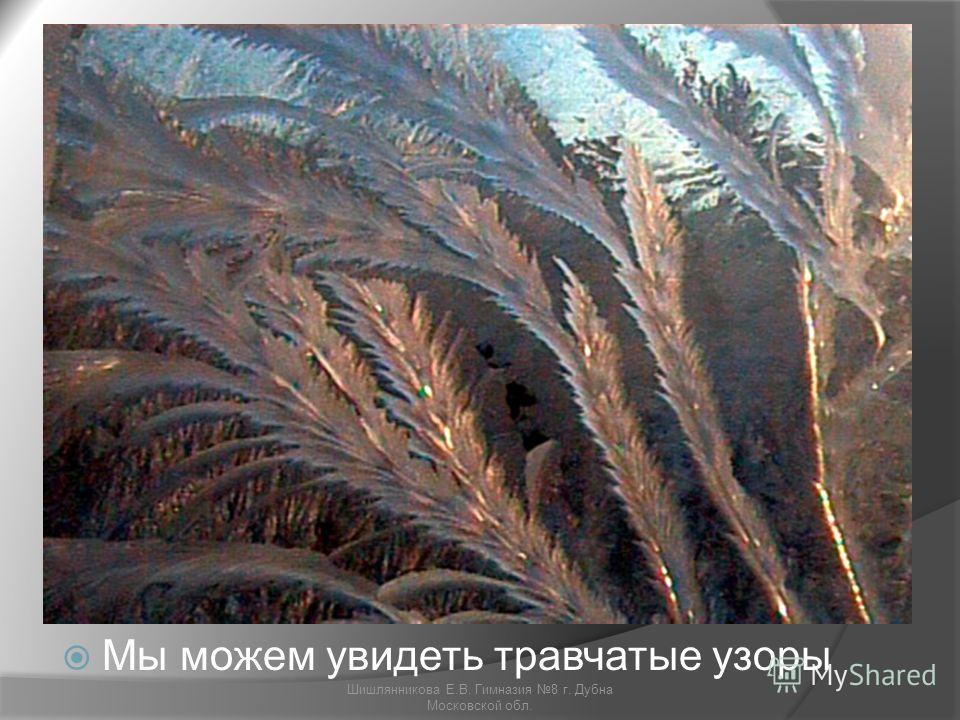 Мы можем увидеть травчатые узоры Шишлянникова Е.В. Гимназия 8 г. Дубна Московской обл.