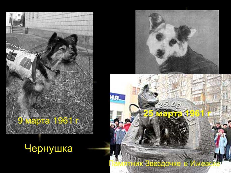 Звездочка Чернушка Памятник Звездочке в Ижевске 9 марта 1961 г 25 марта 1961 г