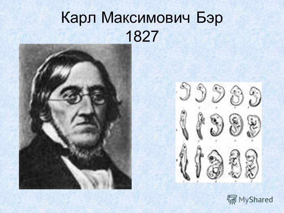 Карл Максимович Бэр 1827