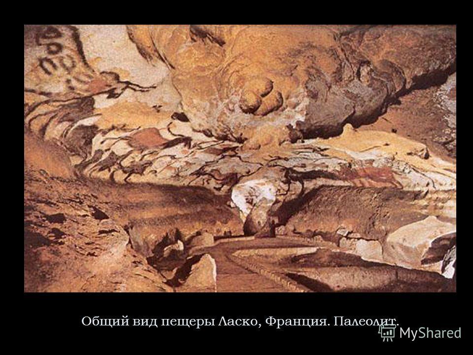 Общий вид пещеры Ласко, Франция. Палеолит.