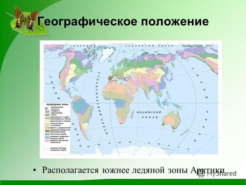 Географическое положение Располагается южнее ледяной зоны Арктики